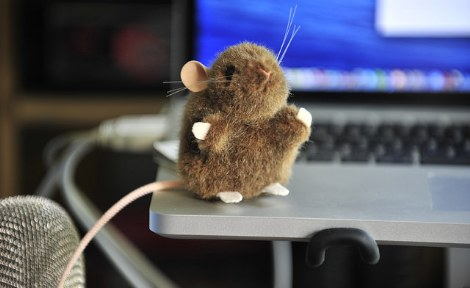 Tech Mouse by Lex McKee CC-BY-NC.jpg