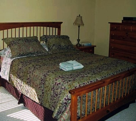 guest bedroom on main floor.jpg