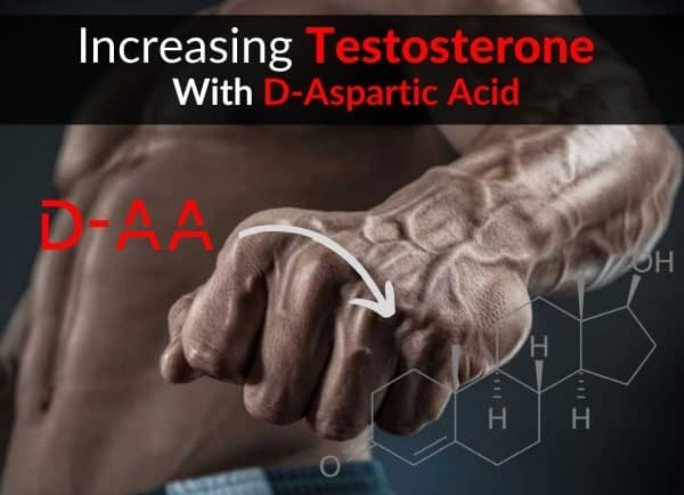 D aspartic acid and testosterone.jpg